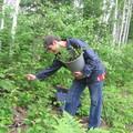 Plantation d'arbres dans les sentiers de Récré-eau des Quinze